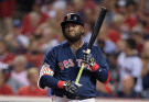 David Ortiz net income